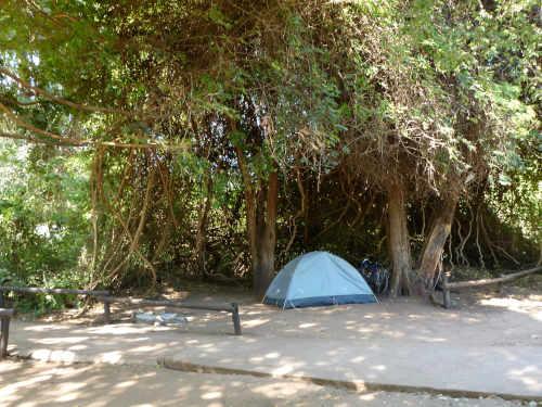 カサネのチョベサファリロッジ(kasane,chobe safari lodge) (26)