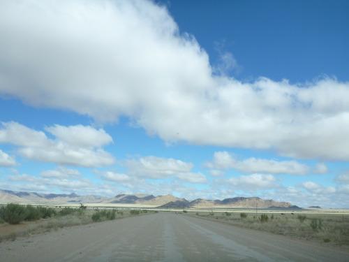 ナミビアナミブ砂漠2 (3)