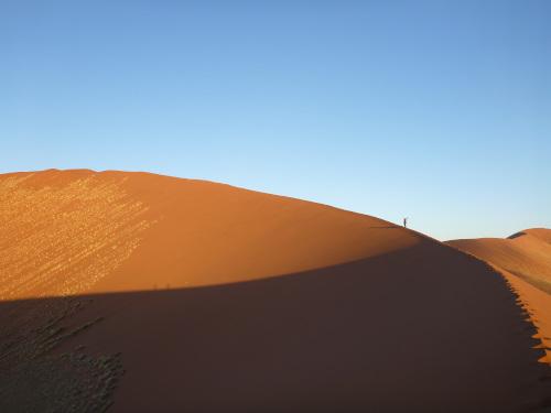 ナミビアナミブ砂漠2 (9)