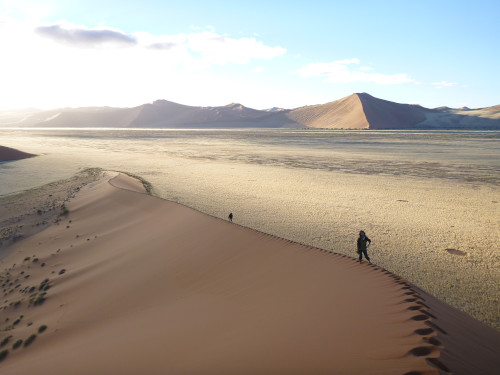 ナミビアナミブ砂漠2 (7)