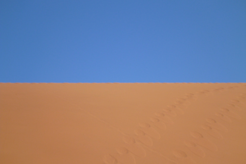 ナミビアナミブ砂漠2 (20)