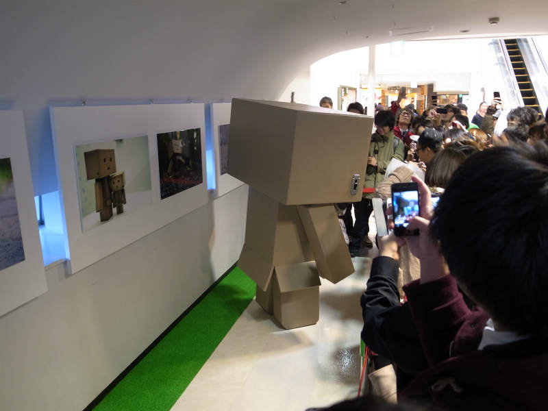 名古屋パルコで等身大着ぐるみダンボーを撮影[よつばとダンボー展2013] (8)