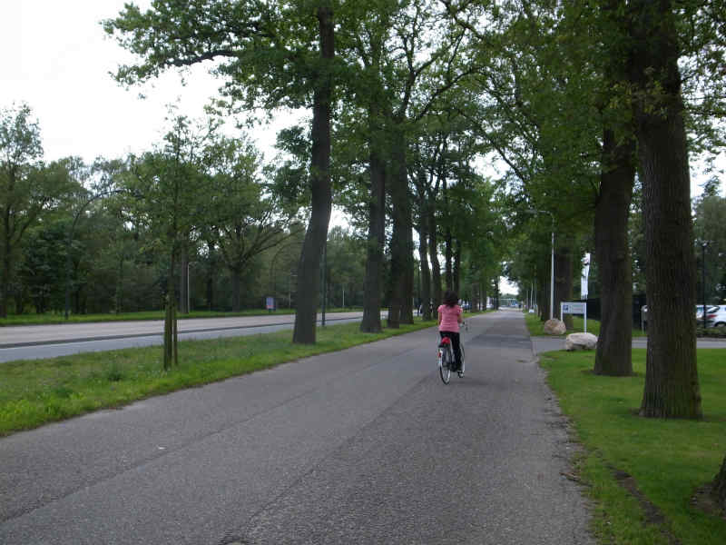 舛添知事はドイツを自転車旅した僕のブログを読んだのか?東京都内の自転車道整備で予算は約60億円だってさ! (3)