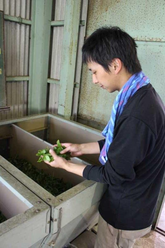 鈴木製茶のお茶工場を見学して、茶葉の作り方を聞いてきたよ!(新城市作手田代) (3)