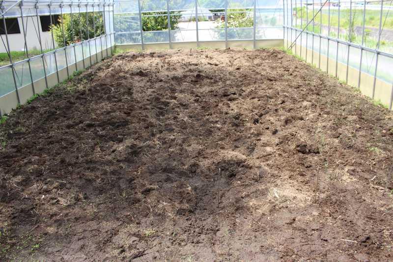 ビニールハウスの畝の作り方とホースで沢から水源を確保した件 (1)