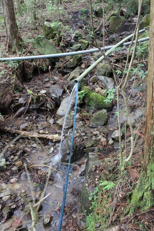 ビニールハウスの畝の作り方とホースで沢から水源を確保した件 (12)