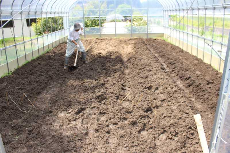 ビニールハウスの畝の作り方とホースで沢から水源を確保した件 (5)