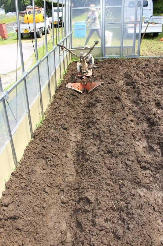 ビニールハウスの畝の作り方とホースで沢から水源を確保した件 (4)