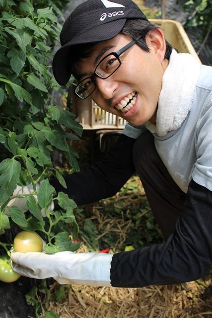 [桃太郎トマトの育て方]収獲を開始して売れないトマトの多さにびっくり!収穫時期は6月下旬から (2)