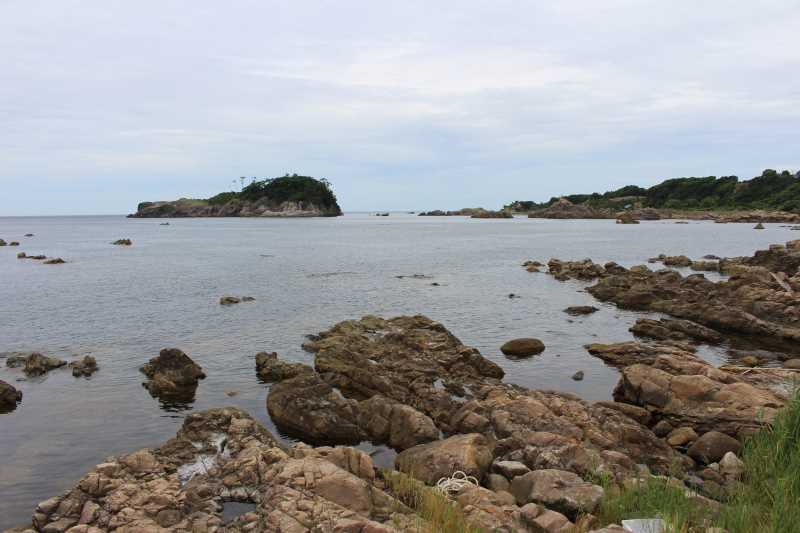 福井で魚突き!80cm弱の真鯛と40cm強の石鯛とキジハタとったどー!! (2)