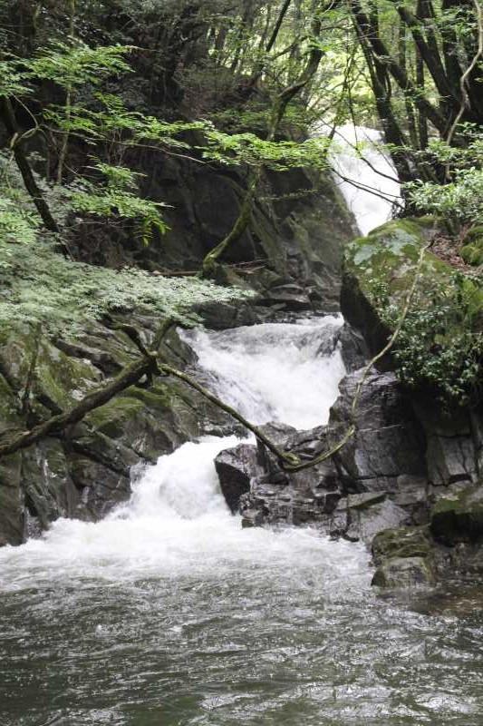 新城市作手地区「保永の三滝」の水難事故動画リベンジしたかったけど・・・「アー!」 (1)