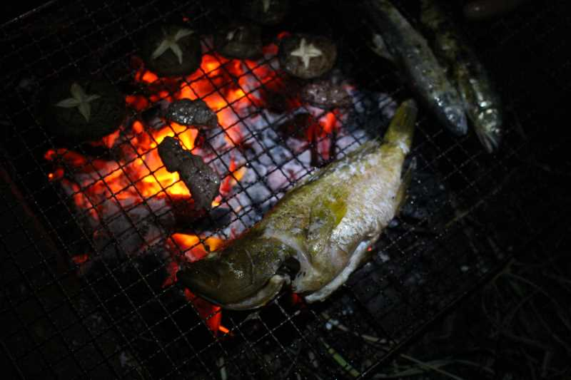 魚突きで獲ったキジハタは炭火で塩焼きに!BBQおいしすぎてまんせー!