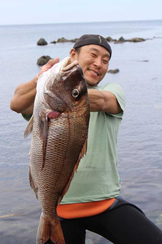 福井で魚突き!80cm弱の真鯛と40cm強の石鯛とキジハタとったどー!! (7)