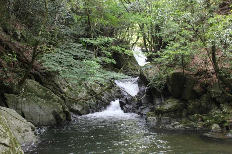 愛知県新城市作手の「保永の三滝」の滝つぼで泳いでみた![動画あり]