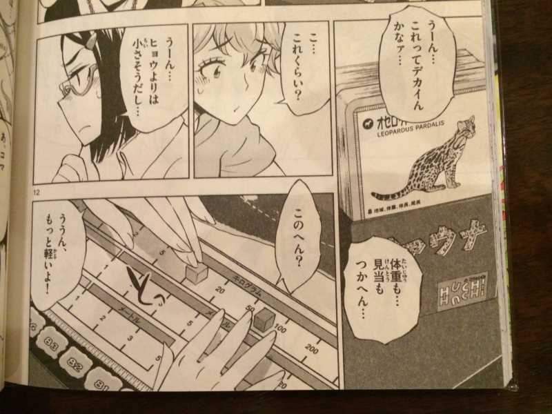 放課後さいころ倶楽部で紹介された動物クイズのボードゲーム「ファウナ」 (3)