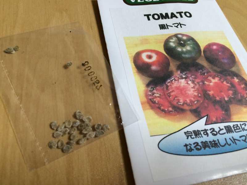 【珍しい野菜栽培】5.珍しい野菜のタネを植えたらネズミに喰われたよ (3)