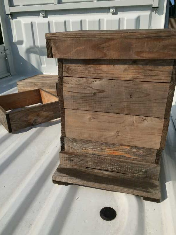 自然養蜂するための蜂の巣箱をもらってきたよ! (2)
