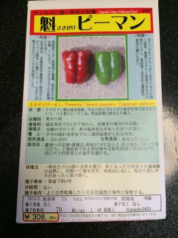 【珍しい野菜栽培】10.珍しい野菜が発芽しないので、珍しくない野菜も育てることにした (4)