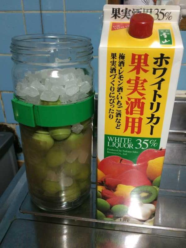[梅酒の作り方]庭に梅がなっていたので梅酒を作ることにした! (5)