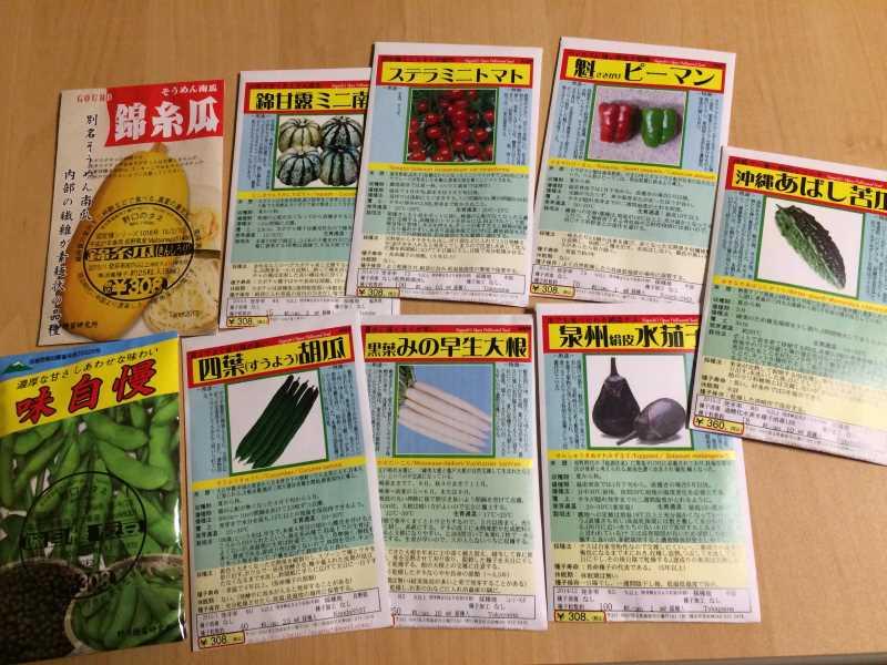 【珍しい野菜栽培】10.珍しい野菜が発芽しないので、珍しくない野菜も育てることにした (1)