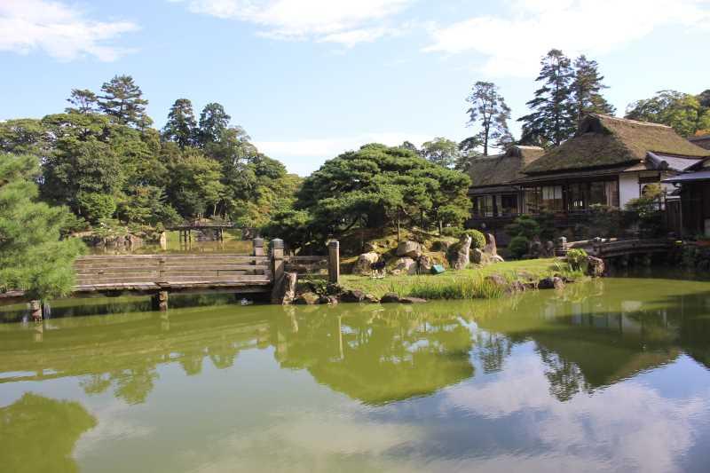 彦根城は行くべきだけど、隣の玄宮園が超おすすめ! (9)