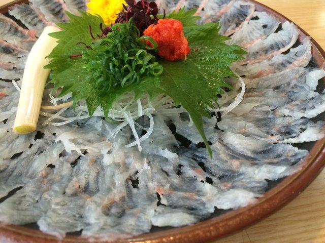 浜松のうな慎でうなぎの刺身を食べてみた!血に毒があるのに生でどうやって食べるのか? (7)