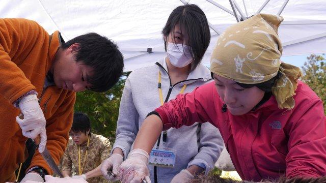 【どやばい村プロジェクト報告2】イベント2日目は、やばい解体BBQ・どやばい村会議 (1)